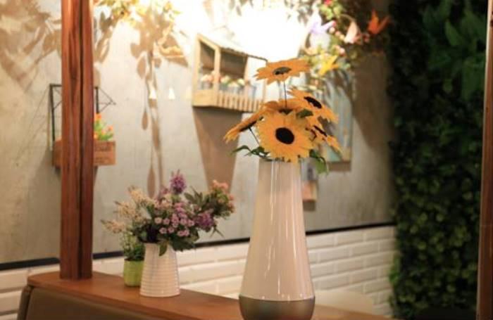 Tak Hanya Cantik, Dream Flower Bisa Deteksi Polusi